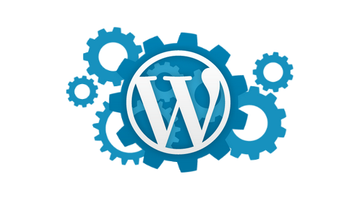 wordpress developpeur