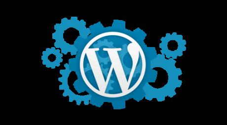 wordpress developpeur